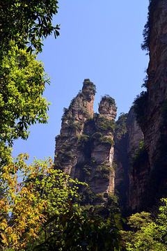 金鞭溪大峡谷