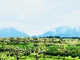 黎川旅游景点攻略图片