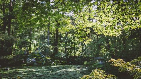 天授庵庭园