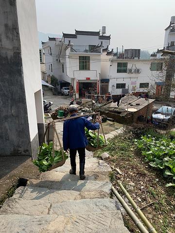 """""""小贴士:江岭因为是非常自然的风景区,景区内还有很多村民居住,所以他们会摆很多摊子卖东西,我大概..._江岭景区""""的评论图片"""