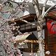 日本风情街