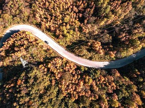 黄柏塬旅游景点图片