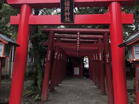 阿苏神社旅游景点图片