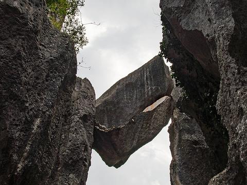 石林风景区旅游景点图片