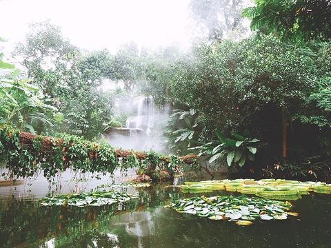 汇友户外·穿越万石植物园旅游景点攻略图