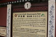 临泽旅游景点攻略图片