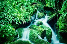 天然氧吧跨年,7大目的地给你最舒畅的体验,附特色景点攻略