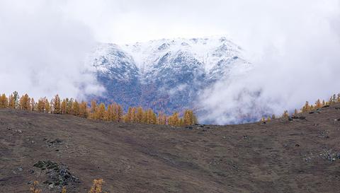 贾登峪的图片