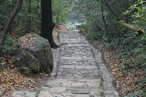 麓山寺的图片