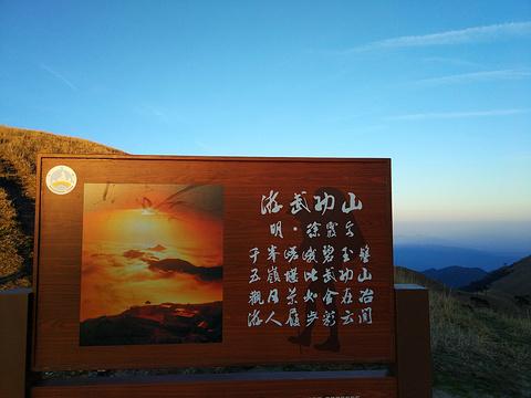 高山草甸旅游景点图片