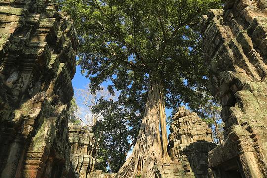 塔普伦寺旅游景点图片