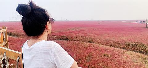 盘锦旅游图片