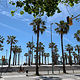 巴塞罗那塔海滩
