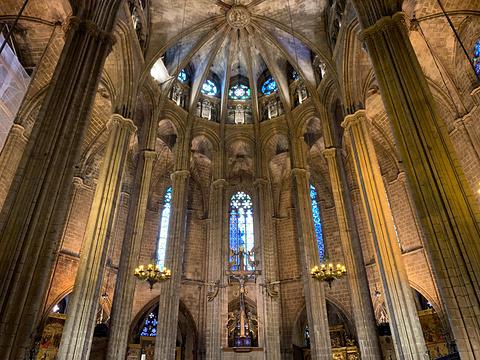 巴塞罗那大教堂旅游景点图片