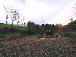 黄岗侗寨,与自然共存共融共长的地方
