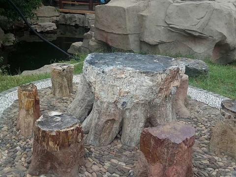 古塔公园旅游景点图片