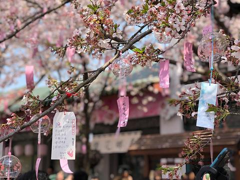 樱花邮局旅游景点攻略图