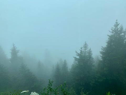 瑞吉山旅游景点攻略图