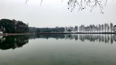 东湖生态园