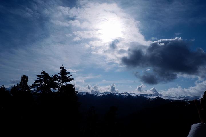 """""""...峡谷,还要原路返回,终于见到了,车子沿着山路逐渐上升,景色越来越美,我们就一直在车里喊,好美呀_色季拉山""""的评论图片"""